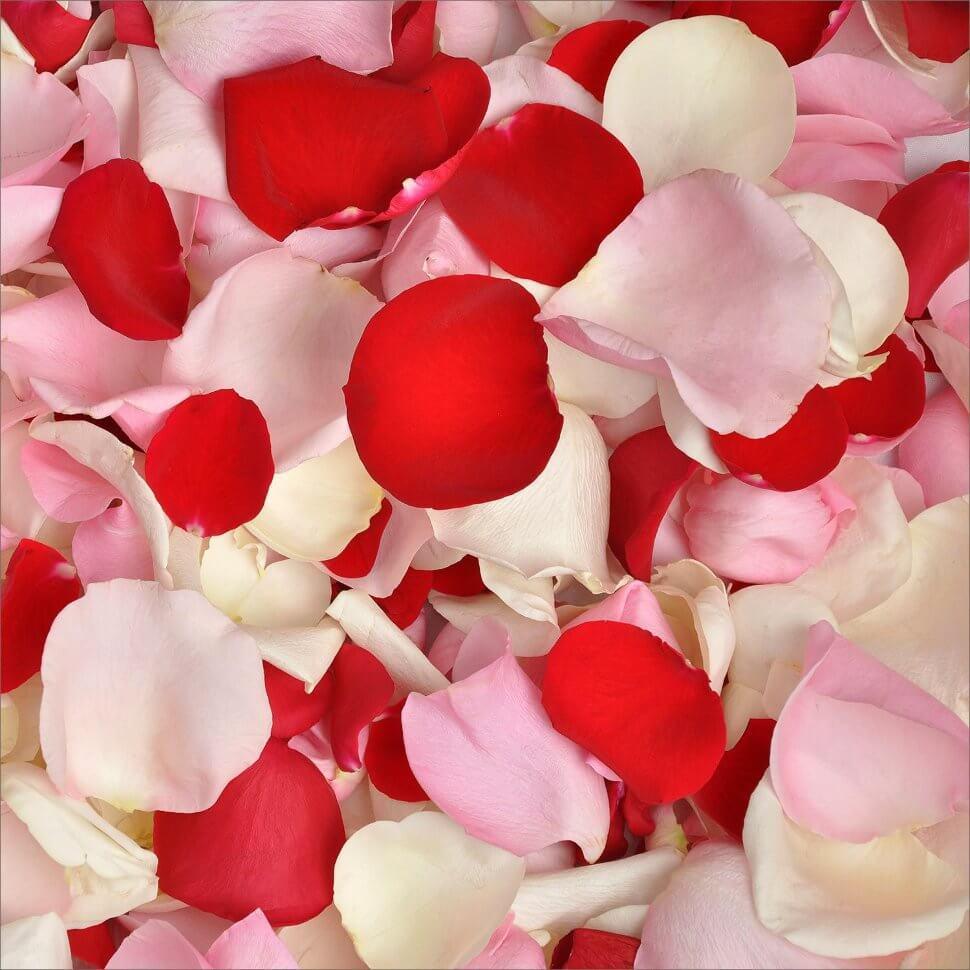 говорить картинки белых роз с лепестками роз обозначает, что